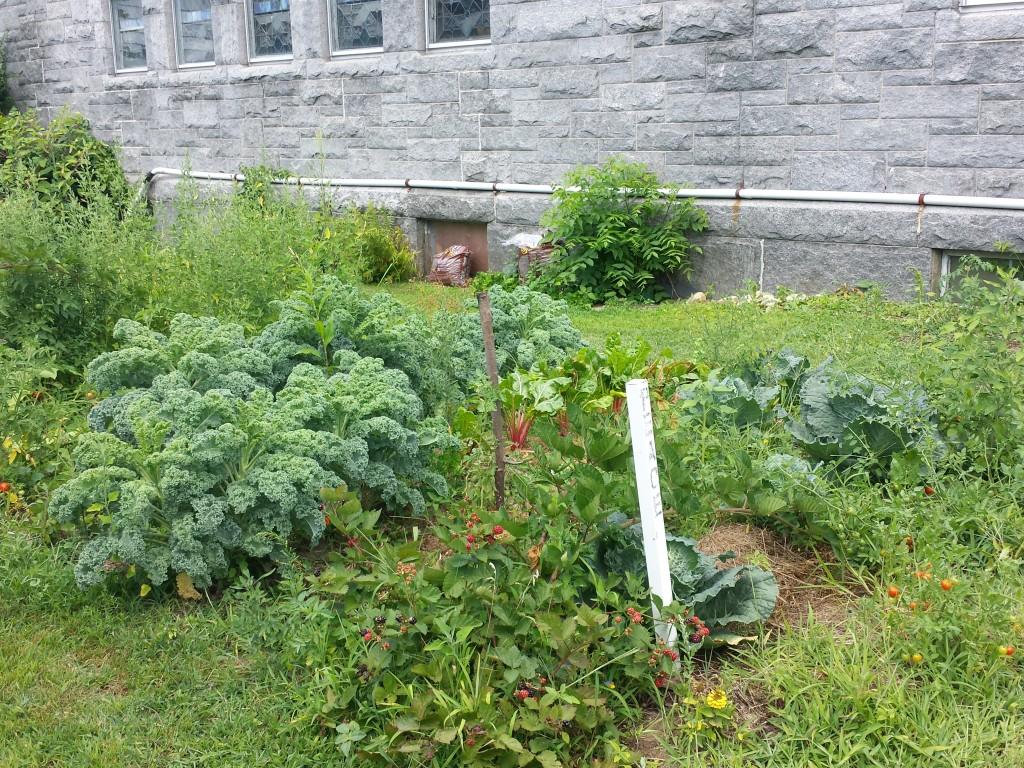 UUPM Garden